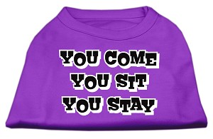 You Come, You Sit, You Stay Screen Print Shirts Purple XS (8)